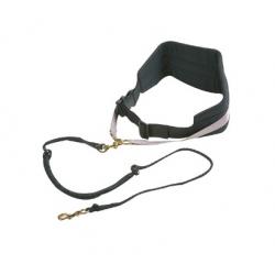 AFP Outdoor Dog treat bag