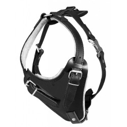 Dogtra ARC Handsfree